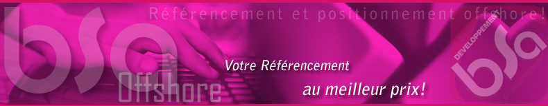 referencement offshore developpement web referencement et positionnement offshore bsa algerie